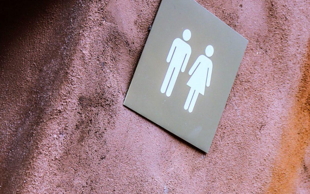 6 manières efficaces de déboucher vos toilettes